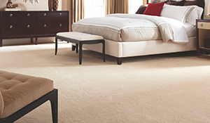 Our Featured Softique Carpet By Alexander Smith In The Online Product Catalog